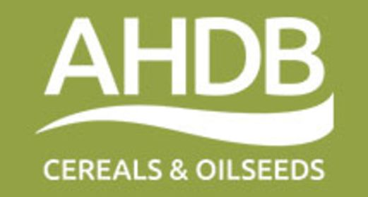 logo for AHDB cereals & oilseeds