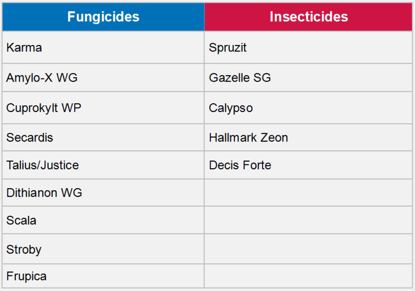 Sort your fruit fungicides   Certis Europe United Kingdom